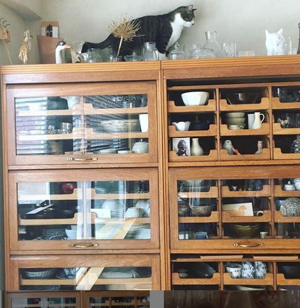 石田ゆり子の食器棚