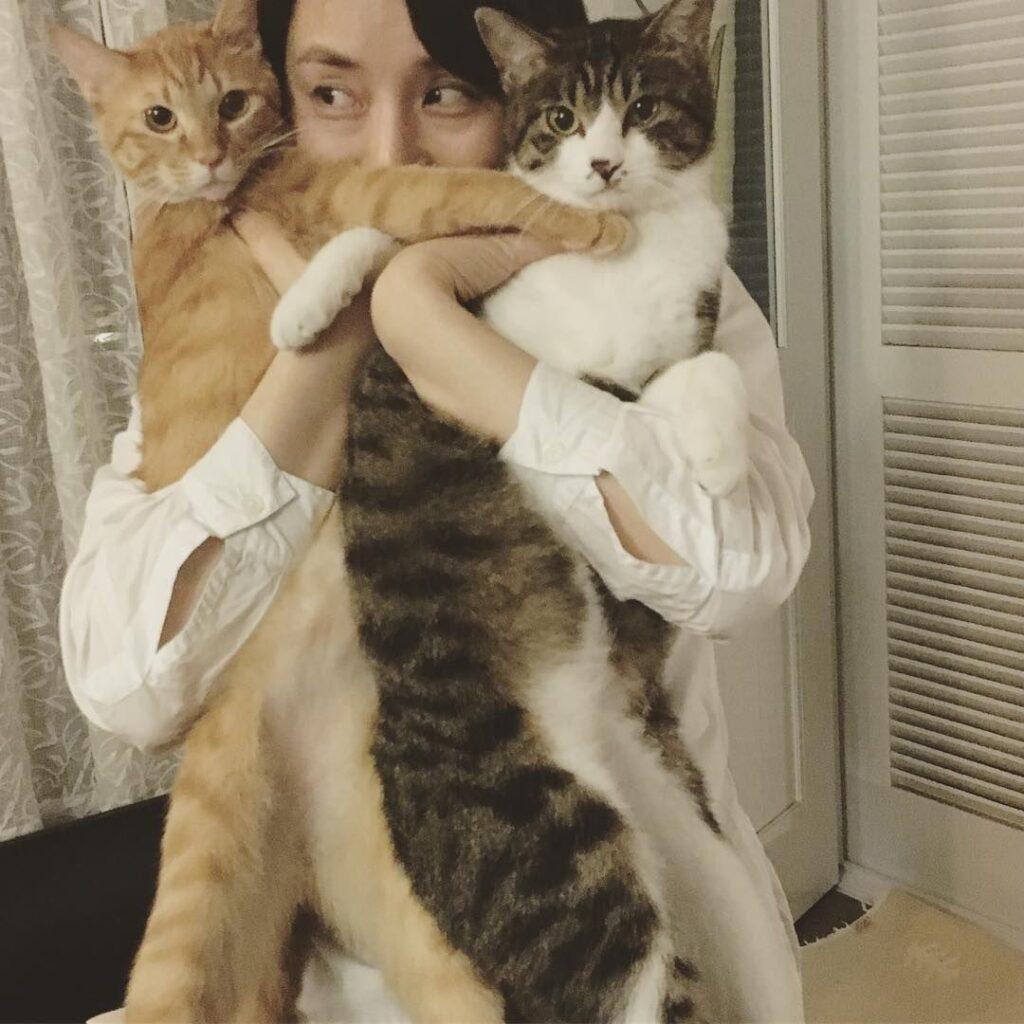 石田ゆり子とハニオ
